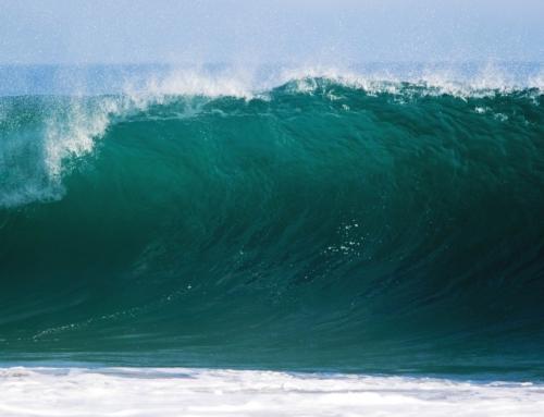 Die vierte Welle und der finale Lockdown